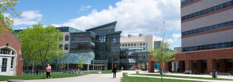 Carver College of Medicine